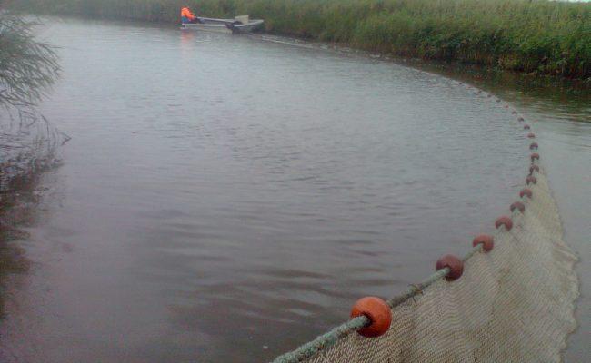 KRW visserijkundig onderzoek